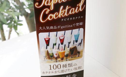 gattina(ガッティーナ)様 卓上三角柱POP(2019.7月)