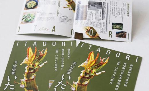 高知県食品団地協議会様 いたどりリーフレット(2019.2月)